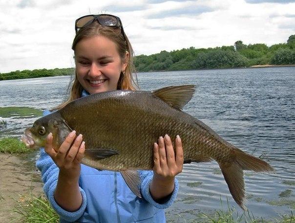 что делают накануне рыбалкой