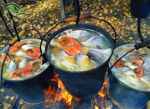 рыбалка с ухой на природе