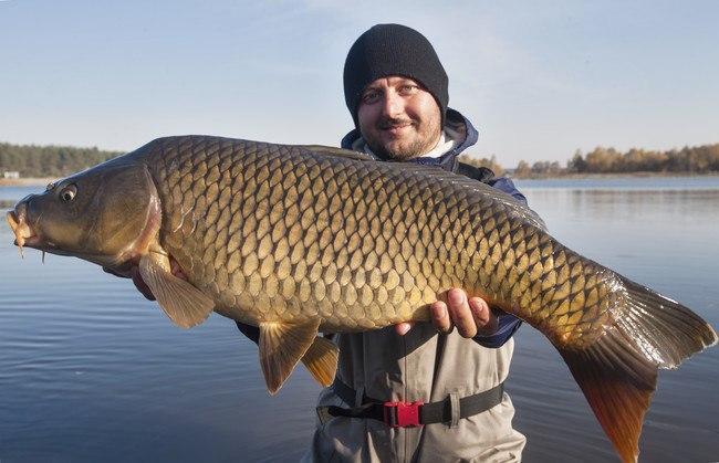 канал охотник и рыболов спутник