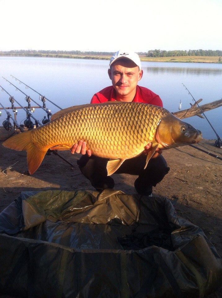 рыболовные трофеи украины